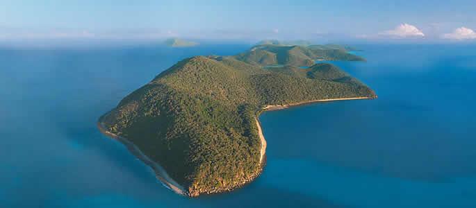 Orpheus Island Australia  city photos gallery : ... island lizard island bedarra island hinchinbrook island orpheus island