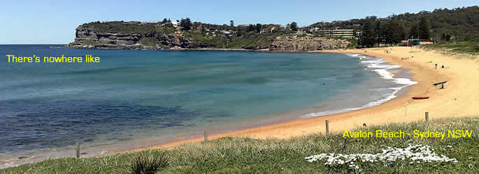 avalon beach sydney nsw