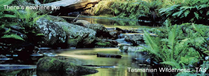 Visit beautiful Northern Tasmania
